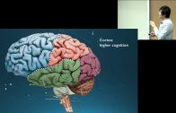 Dr.-Octavio-Choi-presents-Brain-Basics-An-Introduction-to-Cognitive-Neuroscience